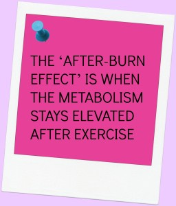 THE FAT BURNING WAY IMAGE