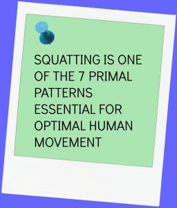 THE SQUATTING WAY IMAGE