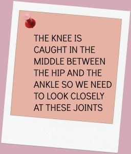 the better knee way_image