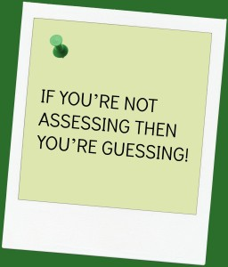 Assessing and Guessing